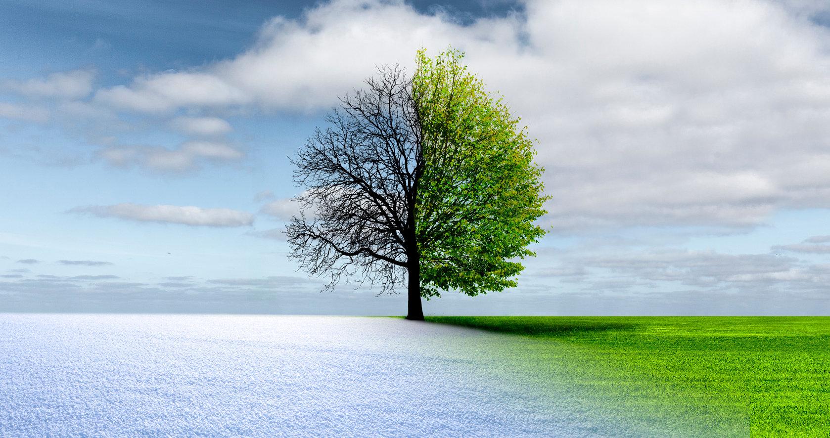escenario de invierno y verano
