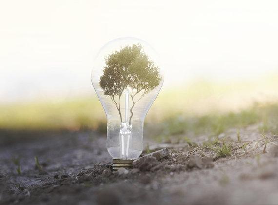 Cinco inventos para un desarrollo sostenible